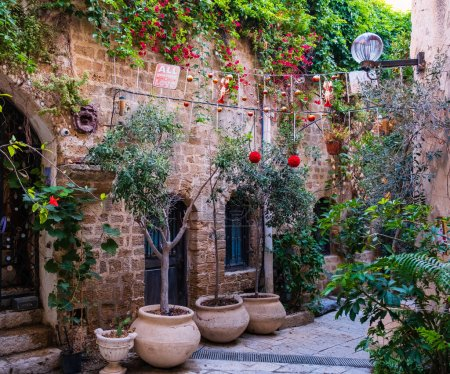 A beautiful old yards of the ancient Jaffa city, Israel .