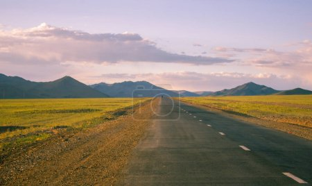 Photo for Beautiful Mongolian Road with tarmac with a grey sky and white clouds - Royalty Free Image