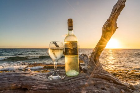 Photo for Glass and bottle of wine on dead dried tree during sunset - Royalty Free Image