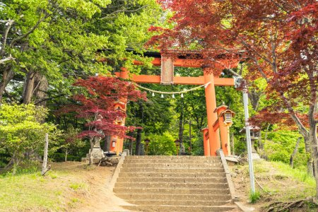 Red torii of Chureito temple Japan