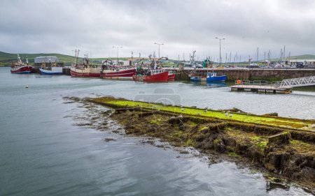 Photo for View of the harbor with boats in the north atlantic - Royalty Free Image