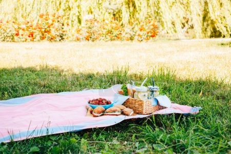 Fast food and diet. Berries and sandwiches on picnic.