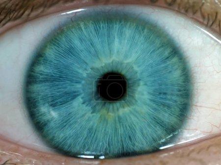 Photo pour Photo macro d'un œil humain bleu - image libre de droit
