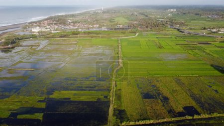 Photo for Aerial view of flooded rice fields - Royalty Free Image