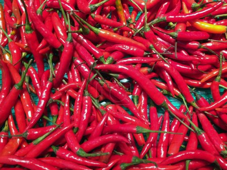 Photo for Pile of Red small Chili in the tray. Texture background of red pepper heap. - Royalty Free Image
