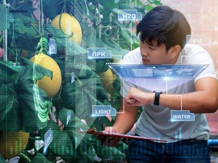 joven agricultor inteligente de Asia utilizando Ar, Vr, tecnología de vidrio de proyección 3d en su granja inteligente .