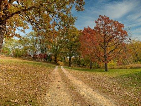 Photo pour Campagne campagne route croquante automne couleurs d'automne. Dirt Road à travers les arbres. Paysage panoramique horizontal - image libre de droit