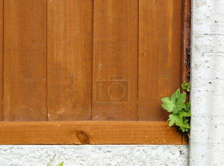 Foto de Una cerca de jardín de madera con poste de hormigón en primer plano - Imagen libre de derechos