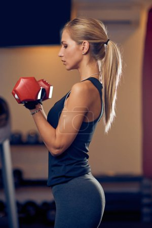 Photo for Woman lifting dumbbells. Side view. Healthy lifestyle concept. - Royalty Free Image