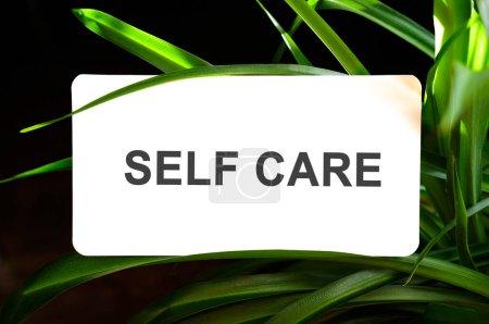 Texto de autocuidado sobre blanco rodeado de hojas verdes
