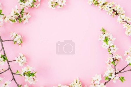 Floral frame with spring white flowers isolated on pink background. Flat lay, top view. Spring time background.