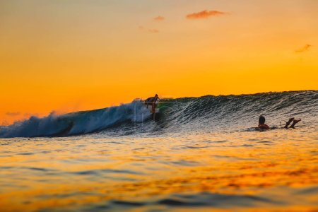 Surf girl on surfboard at sunset. Woman in ocean, sunset surfing.