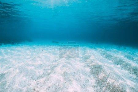 Photo pour Bleu de l'océan tropical avec blanc sable sous-marine à Hawaii - image libre de droit