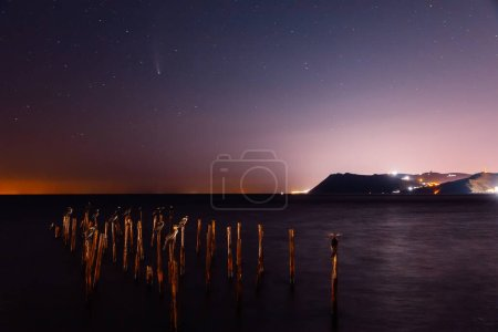 Photo pour Comète C / 2020 NOUVEAU ciel étoilé nocturne avec mer, oiseaux et lumières de la ville - image libre de droit