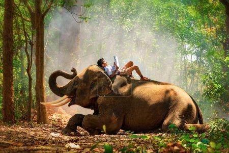 Photo pour Élève garçon lecture livre sur éléphant dans la forêt - image libre de droit