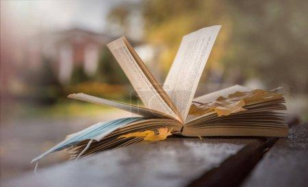 Photo pour Vieux livre en papier et jardin d'automne avec feuillage jaune déchu - image libre de droit