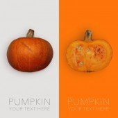 Creative layout made of pumpkin on the white background. Flat lay. Food concept. Macro concept.