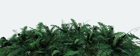 Photo for 3d background illustration with green fern leaves - Royalty Free Image