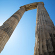 Two columns  in the temple of Apollo in Didim, Ayd...