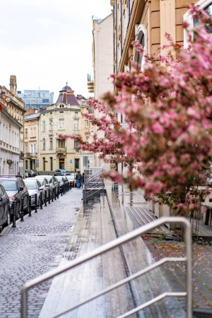Photo for View of the city, blooming sakura - Royalty Free Image