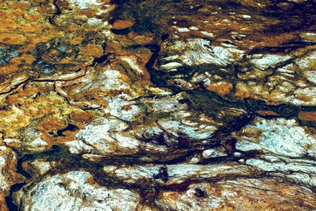 The texture of geyserite near thermal springs form...