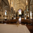 St. Mary of the Mount Church in Pittsburgh...