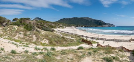 Barriers to dune containment, Cala Agulla, Natural...