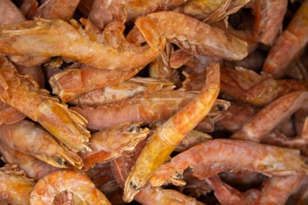 Photo for Uncooked gourmet items, open shrimps and prawns on background, close-up. - Royalty Free Image