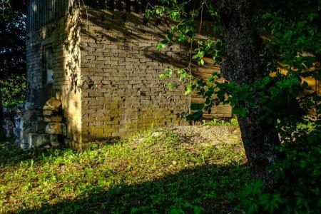 Photo pour Ruines abandonnées en pierre du vieux bâtiment dans la campagne de Lettonie en été avec un feuillage - image libre de droit