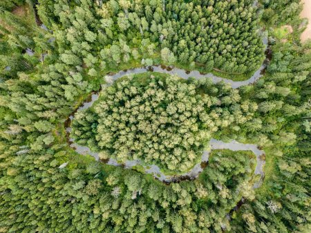 drone image. aerial view of rural area with fields and forests with snake river in woods. latvia, river of Viesata