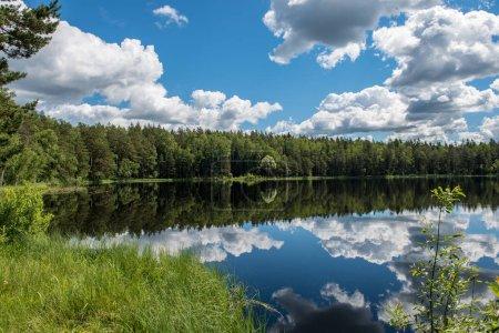 lago tranquilo en la luz del sol brillante con reflejos de nubes y árboles y cielo azul. verano en el campo