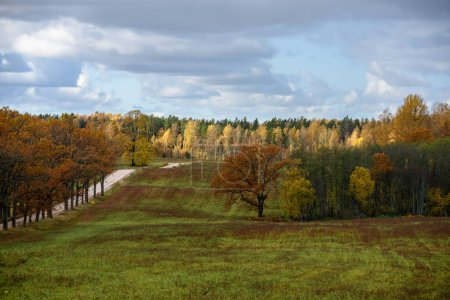 Photo for Empty countryside fields in late autumn, overcast day. - Royalty Free Image