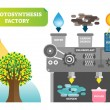 Photosynthesis factory infographic vector illustra...