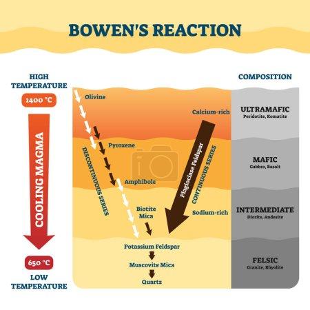 bowens Reaktionsvektorillustration. Etikettierte Petrologie Arbeitserklärung.