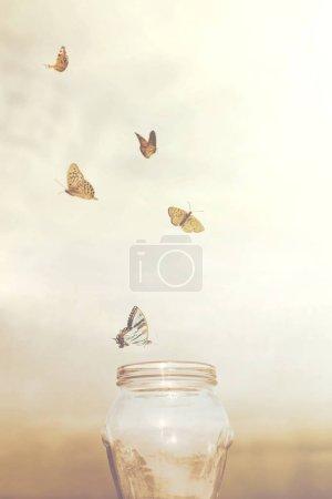 Photo pour Concepts de liberté et de rêve pour un groupe de prisonniers papillons dans un vase - image libre de droit