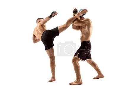 Photo pour MMA. Deux combats professionnels de boxe ou de boxe isolés sur fond de studio blanc. Couple d'athlètes musclés caucasiens en forme ou boxeurs se battant. Sport, compétition, excitation et émotions humaines - image libre de droit