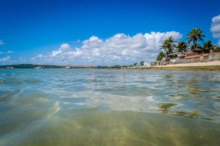 Photo pour Plages du Brésil - Praia do Frances, Maréchal Deodoro - État d'Alagoas - image libre de droit