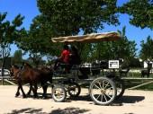 Aldea del Rocio (Huelva) Spain. Typical horse-drawn carriage in Aldea del Rocio