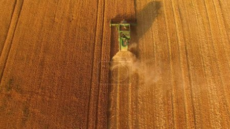 Photo for Top view of combine harvester. Grow grains for export. - Royalty Free Image