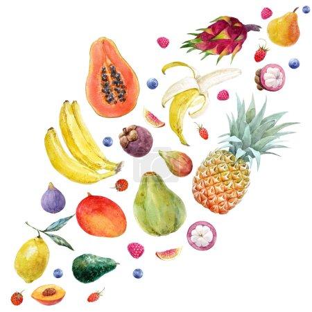 Photo pour Bel ensemble avec des fruits tropicaux exotiques nourriture saine - image libre de droit