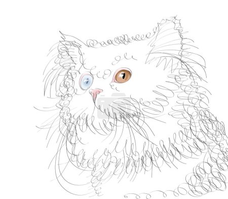 Illustration for Vector sketch of cat on the white background - Royalty Free Image