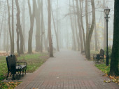 cozy benches in a city foggy park in the fall. Gomel, Belarus
