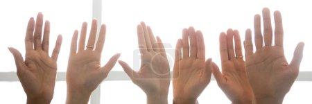 Photo pour Fermer les gens homme femme mains paumes levées dans une rangée. Vote électoral choix volontaire et concept d'opinion unanime. Bannière photo horizontale pour la conception d'en-tête de site Web avec espace de copie pour le texte - image libre de droit