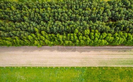 Photo pour Vue aérienne d'une route à travers le champ - image libre de droit