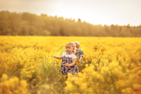 Funny kids in the field at sunset. The concept of ...