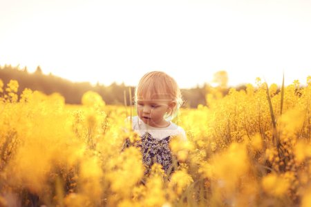 Funny girl in the field at sunset. The concept of ...