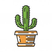Mexican giant cactus in pot color icon