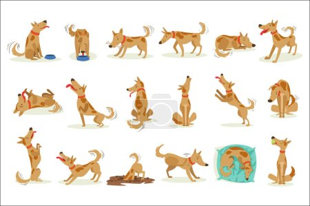 Illustration for Brown Dog Set Of Normal Everyday Activities. Set Of Classic Pet Dog Behavior Illustrations In Cute Carton Style Isolated On White Background. - Royalty Free Image