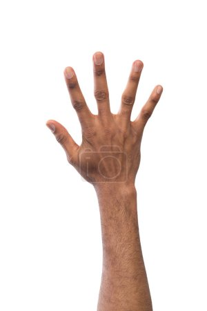 Black hand showing number five isolated