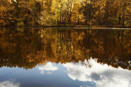Photo pour Lac de la forêt d'automne. Fond de la belle nature. - image libre de droit